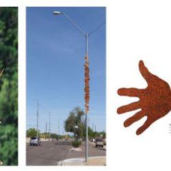 32nd Street Collage Phoenix Public Art